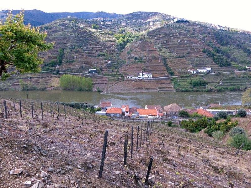 Portugal Alves de Souza_13